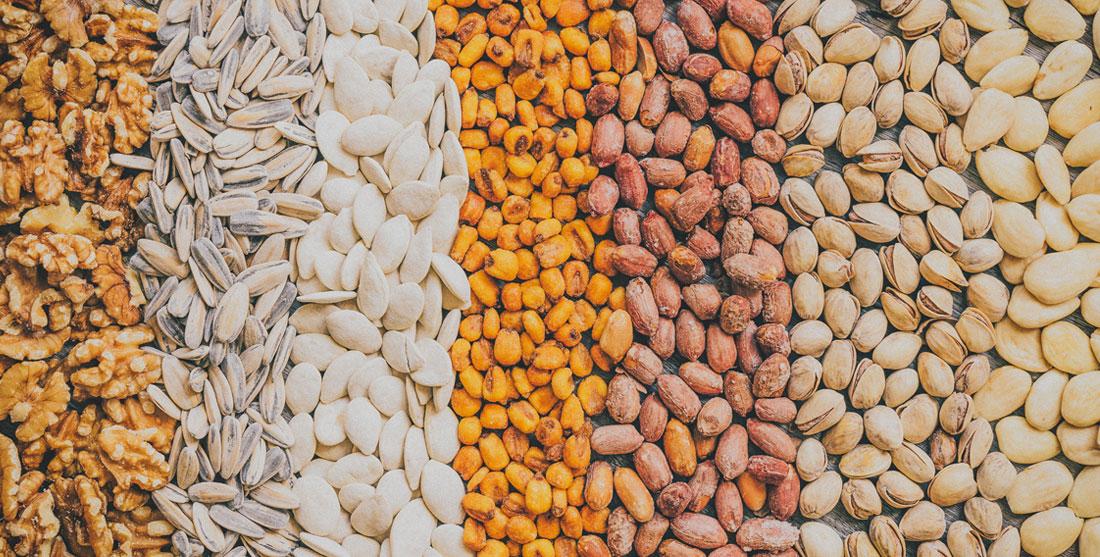 Fontes de proteína vegetal: principais alimentos