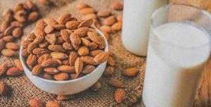 Bebidas vegetais alternativas ao leite de vaca