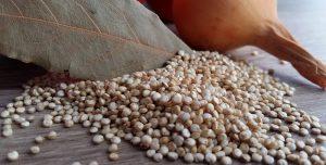 Como comer quinoa? Veja diferentes maneiras para as suas refeições
